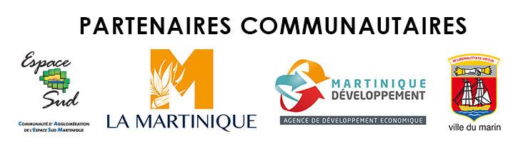 odyssea blue route partenaires communautaires