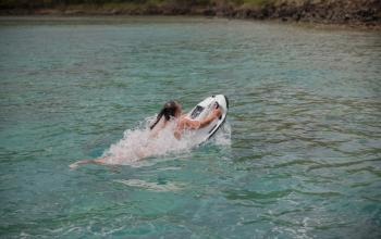 Activité nautique Caribbean yachting