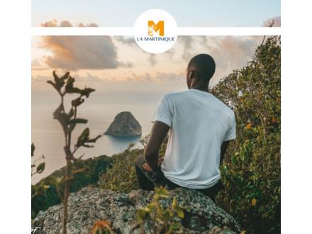 Articles sur la Martinique