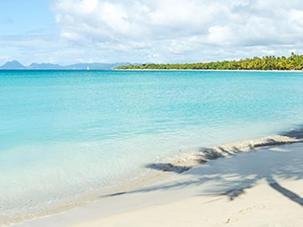 Die Strände von Martinique