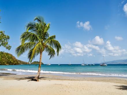 Pourquoi choisir la Martinique?